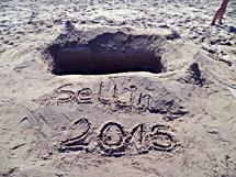 Sellin 2015
